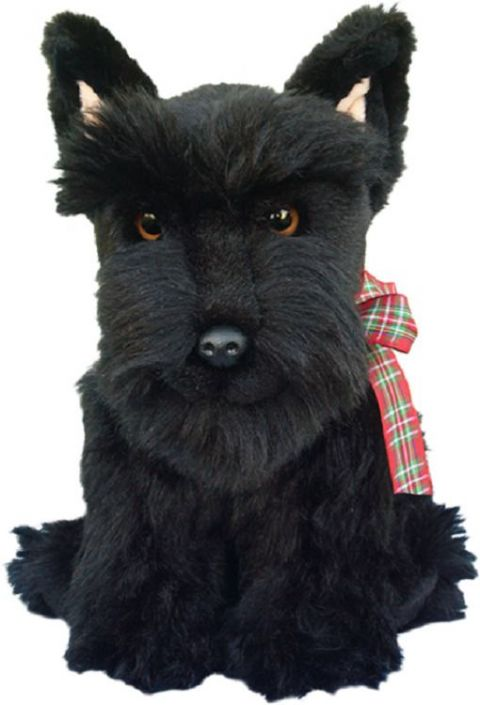 Scottish Terrier, gift wrapped or not, with or without engraved tag